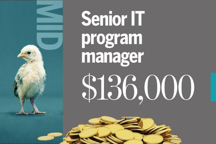 Senior IT program manager