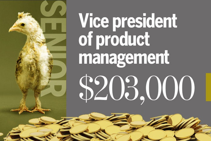 Vice president of product management