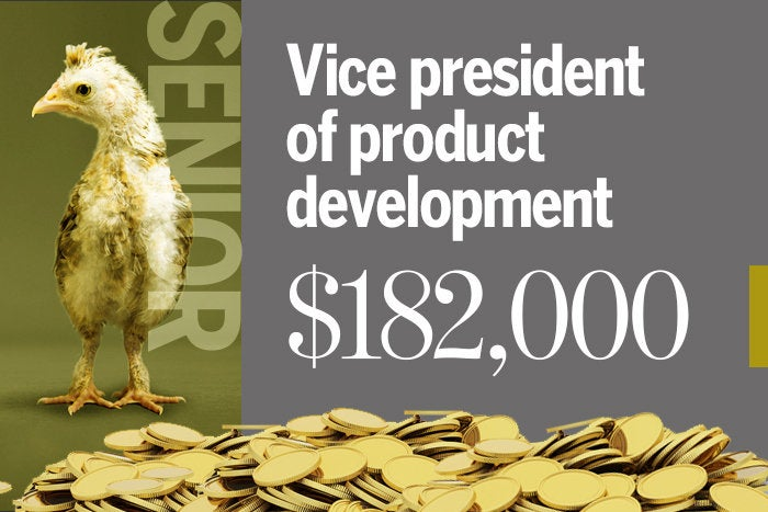 Vice president of product development