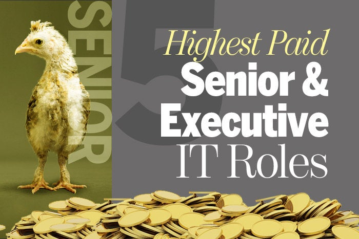 5 highest paid senior and executive roles