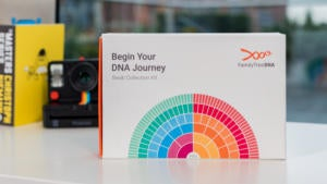family tree dna kit