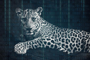Reskilling for digital...or, can a leopard really change its spots?