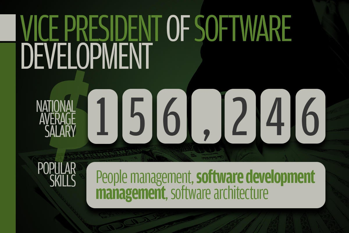 11 vice president of software development