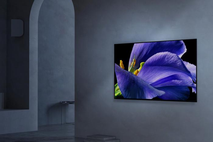 sony master series a9g 4k oled tv