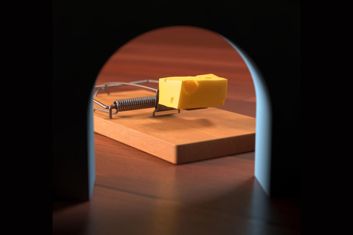 Mousetrap and cheese, seen floor-level from the perspective of the mouse.
