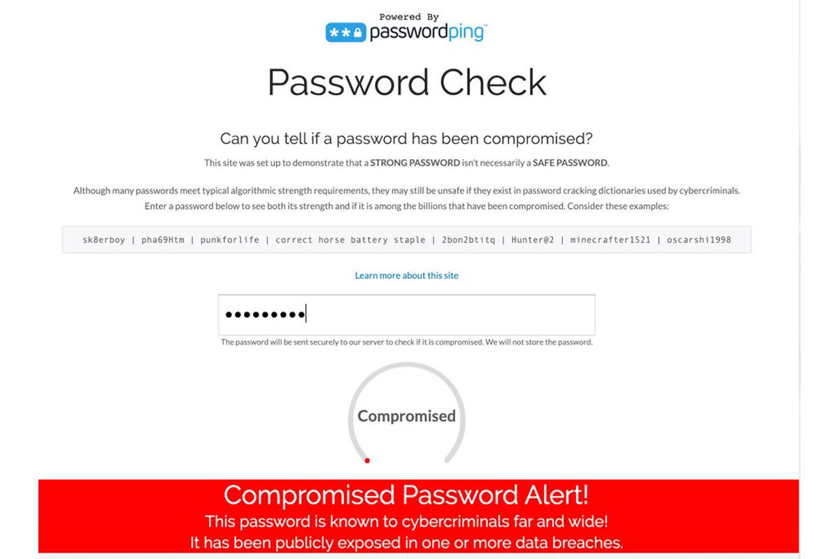 passwordping password check