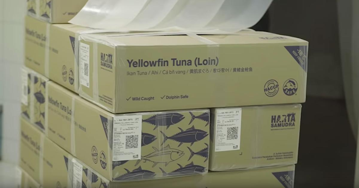 Tuna loins with QR-coded labels