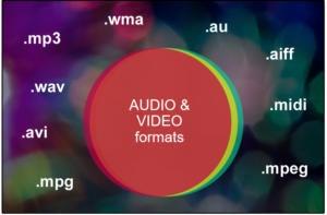 1 audio video file formatsnl