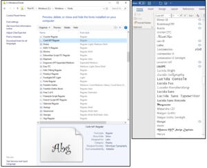 x03 viewselect typefaces from the windows fonts folder or the word fonts list