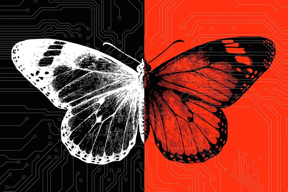 digital transformation butterfly metamorphosis change gap