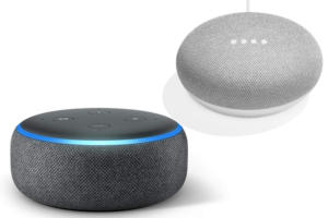 google home mini echo dot