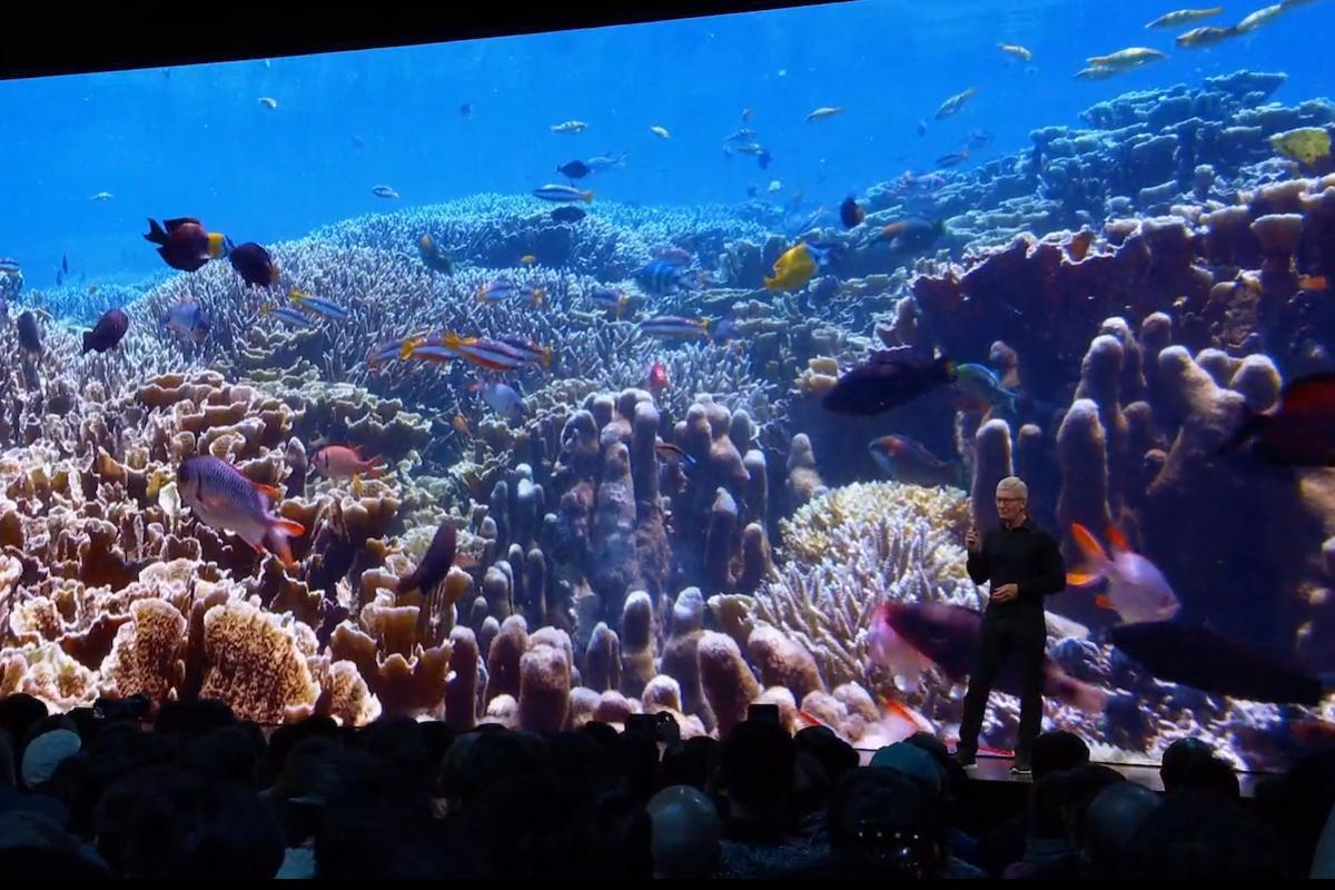 apple tv screensaver underwater
