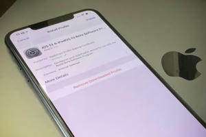ios 13 beta install hero2
