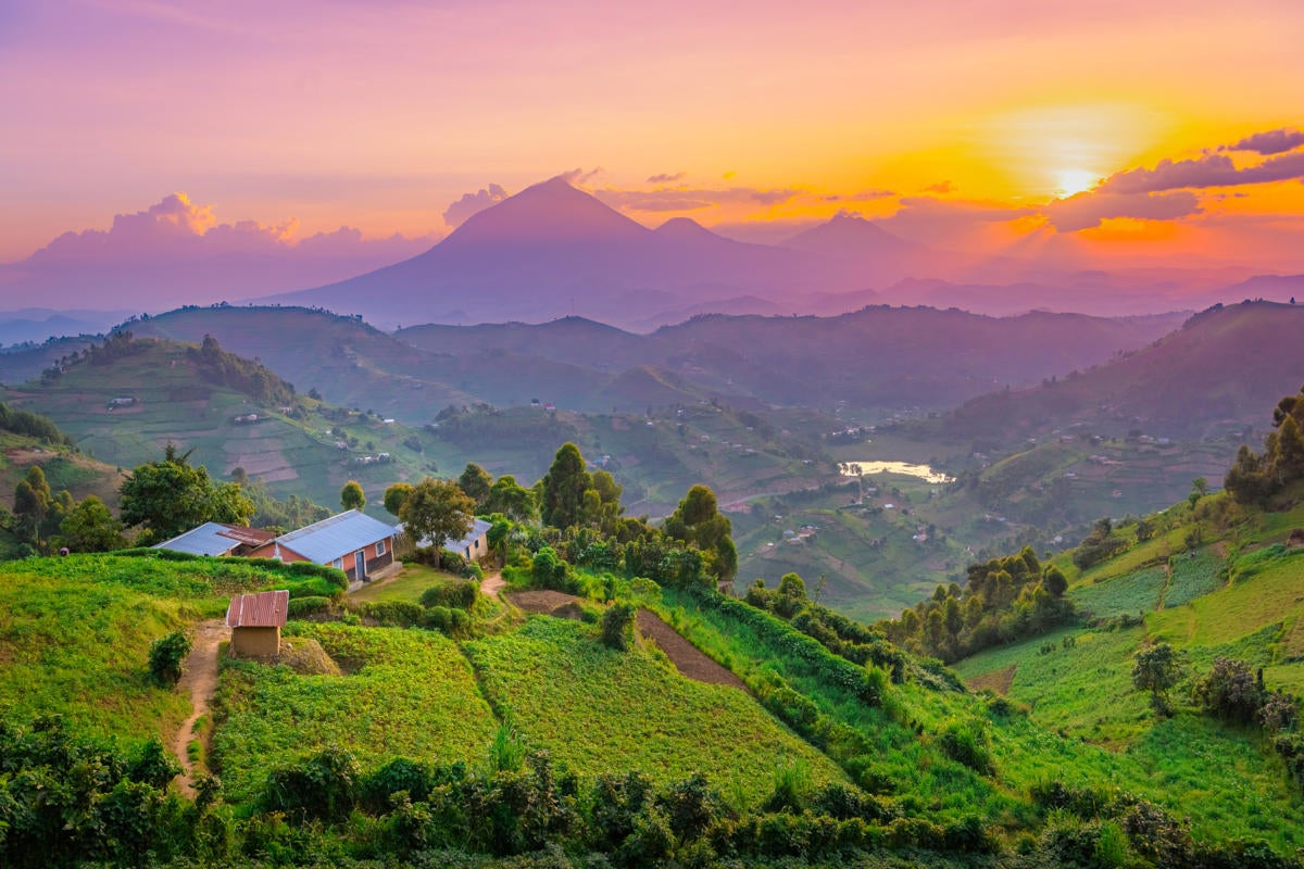 Africa  >  Uganda  >  Kisoro  >  landscape / mountains / hills / farms / villages