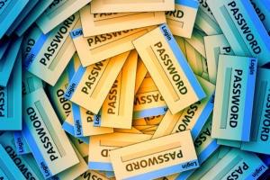 passwords / passcodes