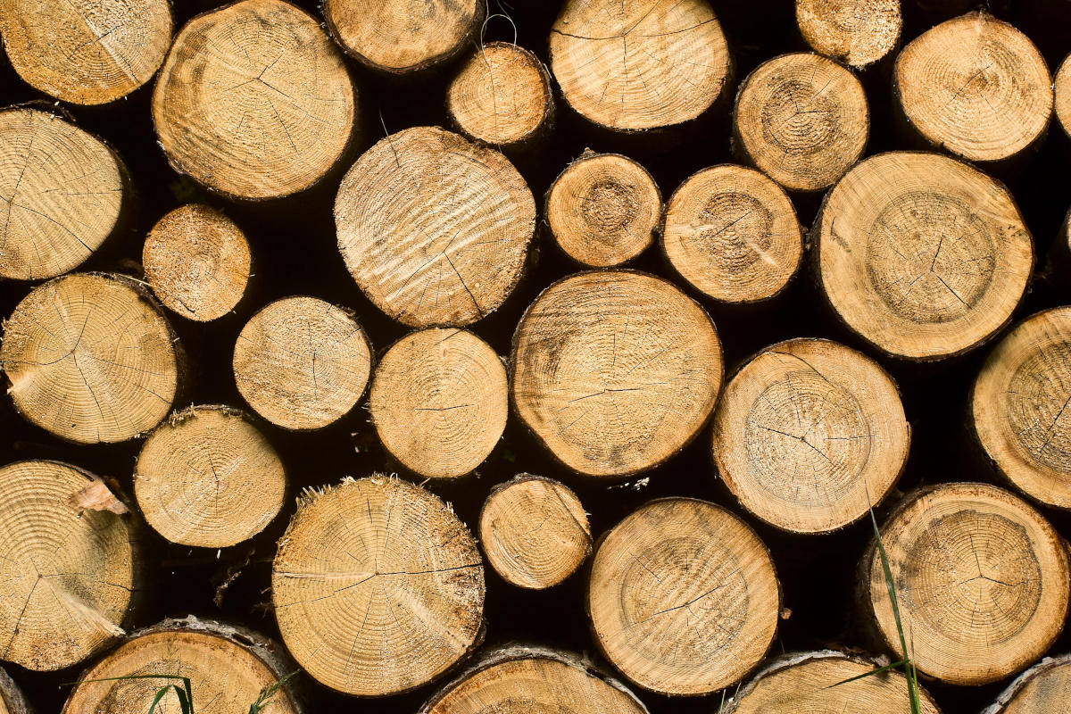 How to manage logs in Linux