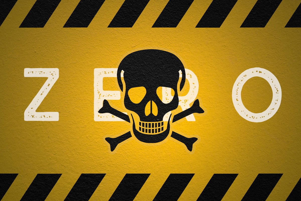 zeroday software bug skull and crossbones security flaw exploited danger vulnerabilities by gwengoa