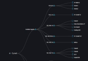 Cynet Network Topology Deployment
