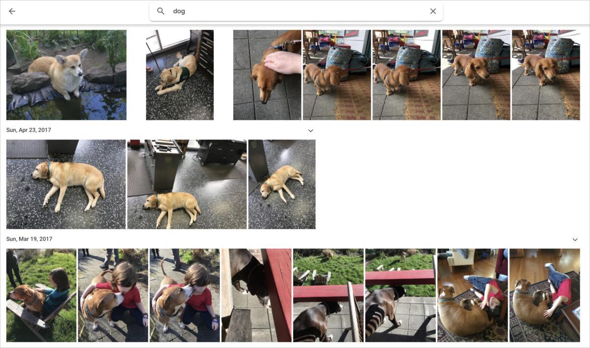 mac911 google photos for sharing