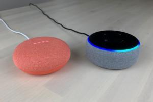 google nest mini with amazon echo dot