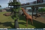 Planet Zoo review: Zoo Tycoon, but for people who want to build bear-themed bathrooms
