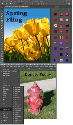 02 photoshop styles are unmatched by any other program