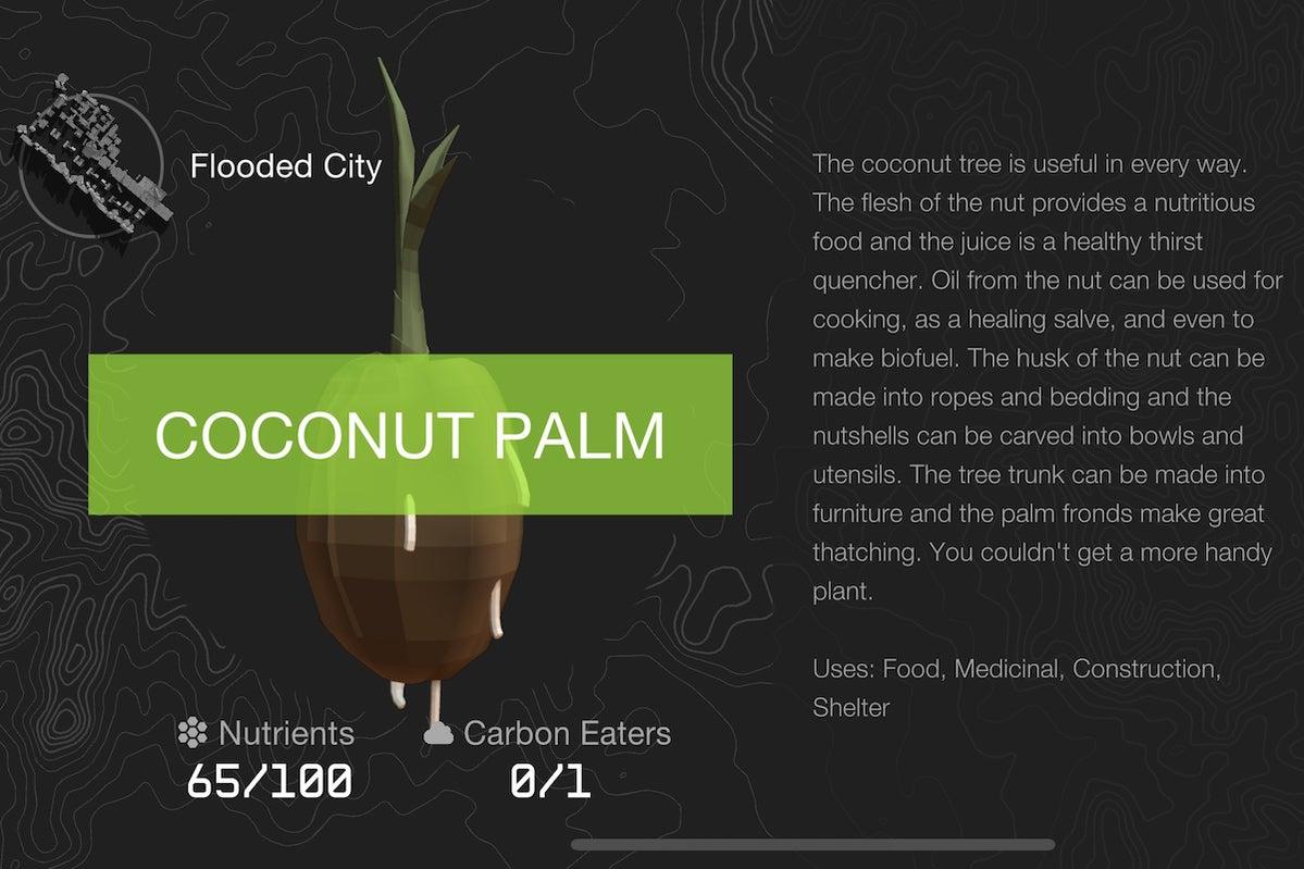 coconut palm doomsday vault
