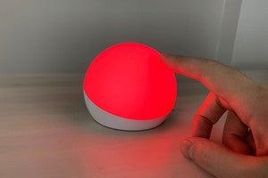echo glow main