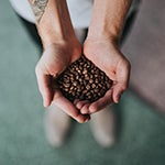 Java / coffee / beans in hands