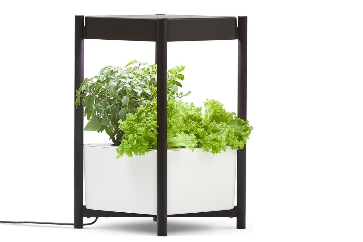 Miracle-Gro Twelve Indoor Growing System review: A nearly foolproof means to fresh herbs and lettuce year 'round