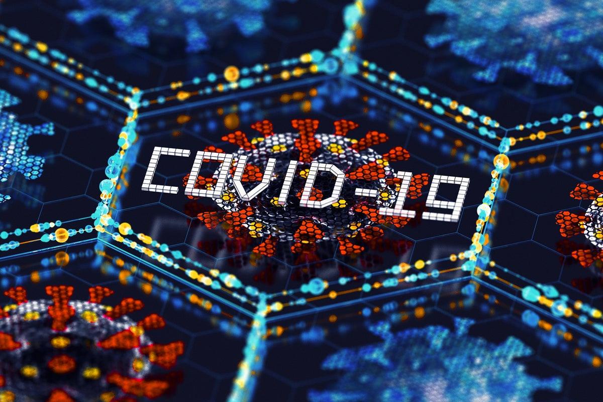 COVID-19 coronavirus morphology / network of cells
