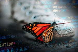 Digital transformation helps AAFP find new relevance with its members
