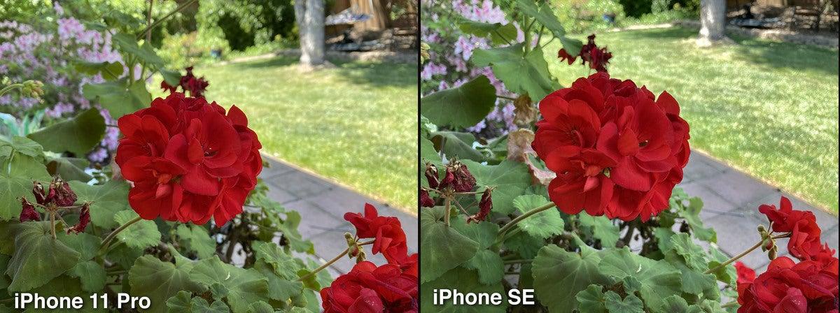 iphone se photo compare01
