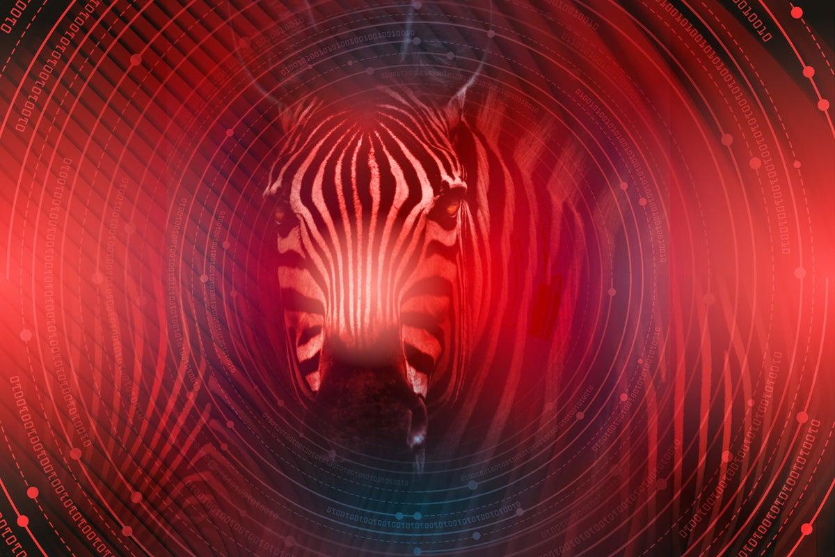 How Zebra Technologies prioritizes work-life balance thumbnail