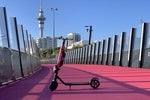 How Flamingo took flight as New Zealand embraced micro-mobility