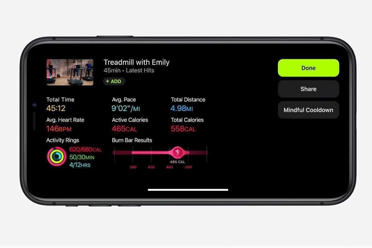 apple fitness data summary
