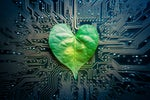 A heart-shaped leaf lies on a circuit board. [Green IT / environmental impact / climate change]