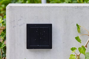 senic friends of hue outdoor switch rain