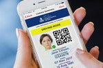 The journey to New South Wales's digital driver's licence and photo card
