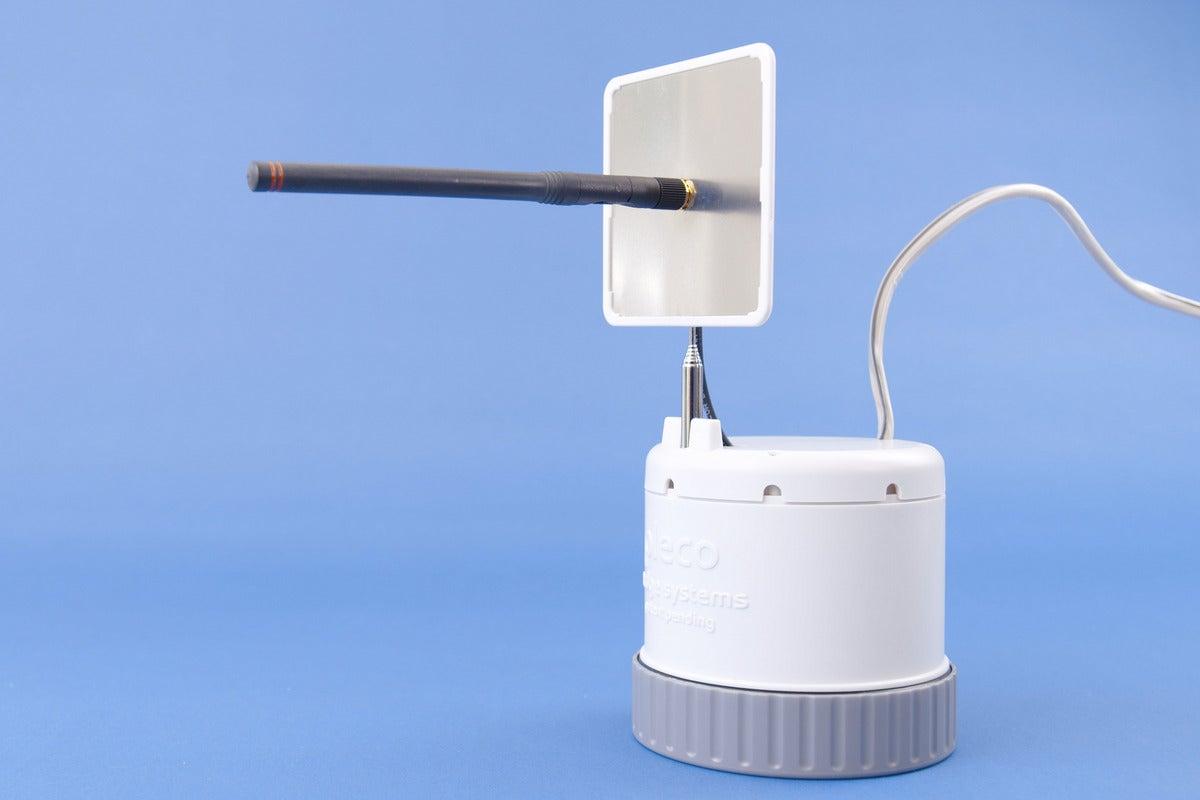 pleco shell antenna