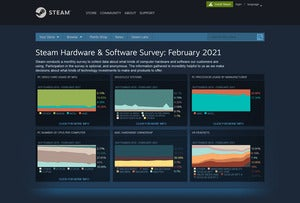steam survey