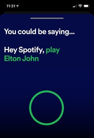 hey spotify voice search