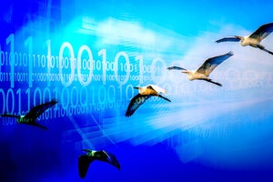 Why migrating to .Net 5 is worth the effort