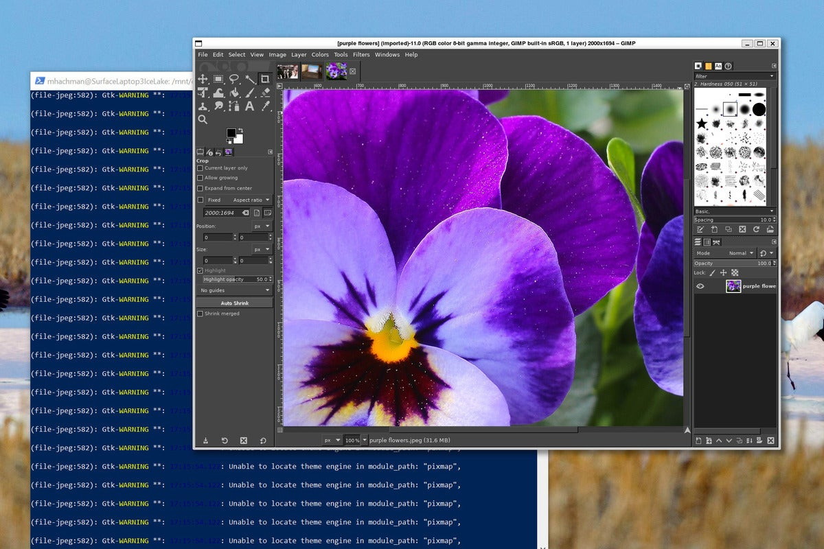 <p>How to add Linux Programs to Windows in just one Simple step thumbnail