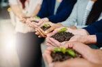 Making Corporate Sustainability … Sustainable