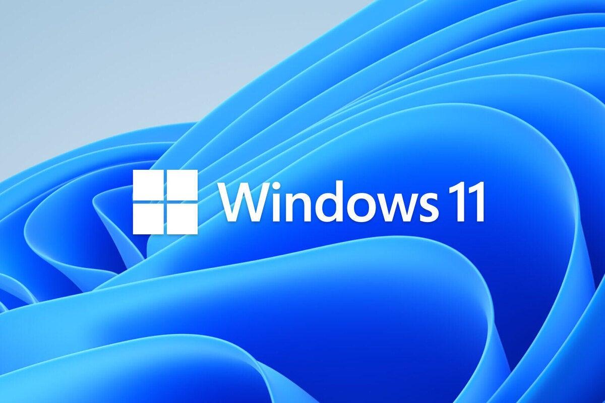 windows 11 logo bloom