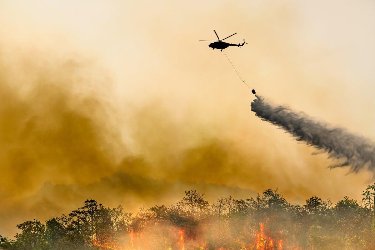 No, wildfire smoke won't kill your PC. But it might hurt it thumbnail