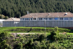 How New Zealand's prisons adapted process, not technology, for better welfare