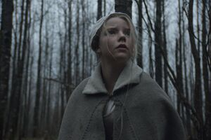 A scene from 'The Witch'