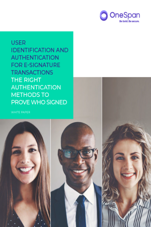 User Identification and Authentication for E-Signature Transactions